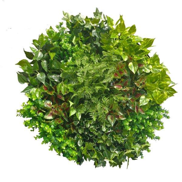 Artificial Green Wall Disc Art 80cm Mixed Fern (Onyx Black)